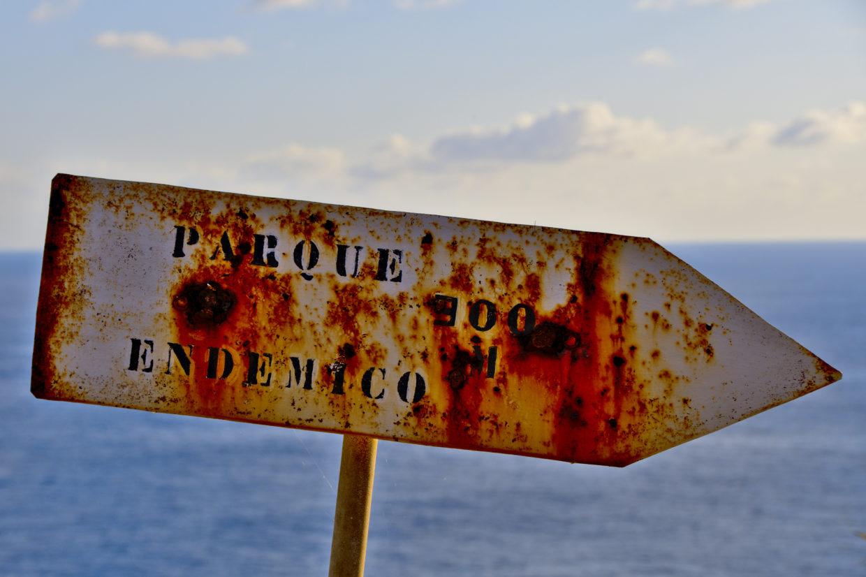"""""""Signpost"""" for the Miradouro do Parque Endémico do Pelado"""