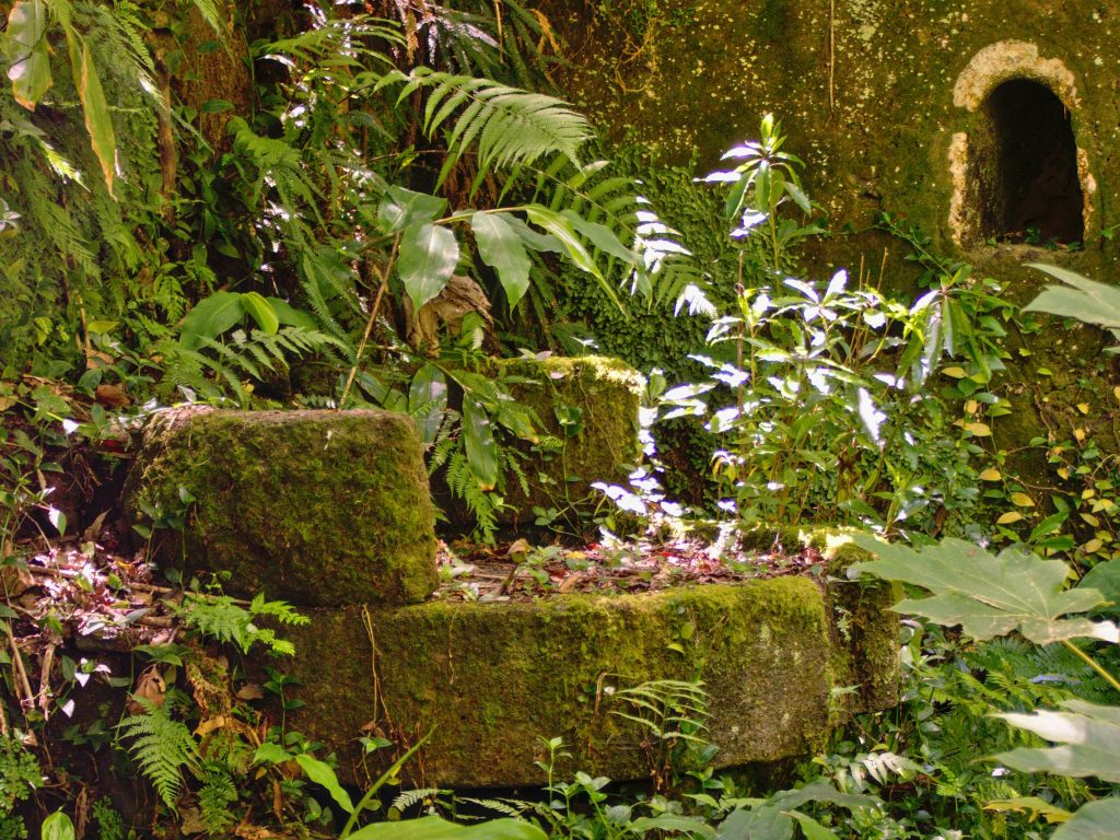 You can find millstones everywhere near the ruins of the water mills, this one has been almost entirely reclaimed by nature.