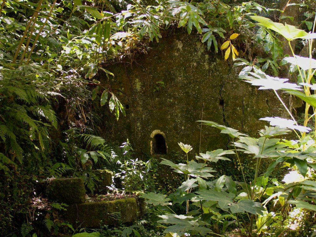 Moinhos da Ribeira Funda - nature has reclaimed some of the buildings