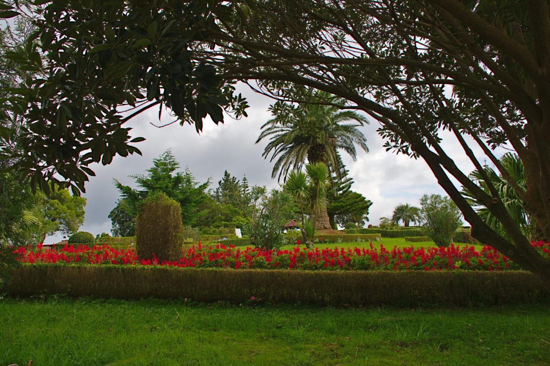 Park with many flowers at the Miradouro da Ponta do Sossego